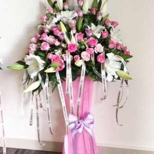 6e85fa6781b CELEBRITY STAND-CODE:278 | Floral Express Flower Shop